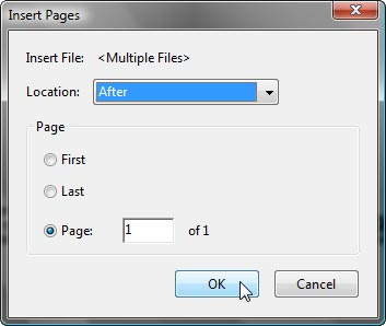 Acrobat Navigation View (Insert Page)